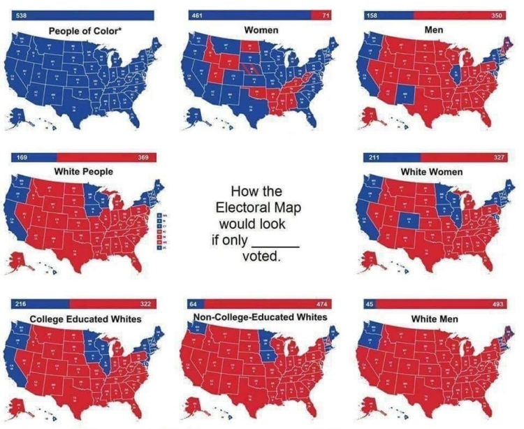 How the electoral map would look if only __ voted