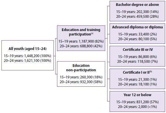 Australian educational pathways 2016